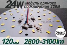 Модуль 24W 120мм (белый) / 2800-3100Lm / 220V